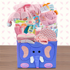 Baby Girl's First Wardrobe Gift Basket